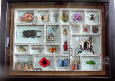 Val - Insect box